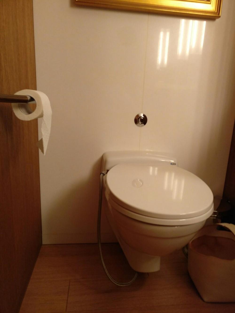 maro fp108 shower toilet bidet seat washlet