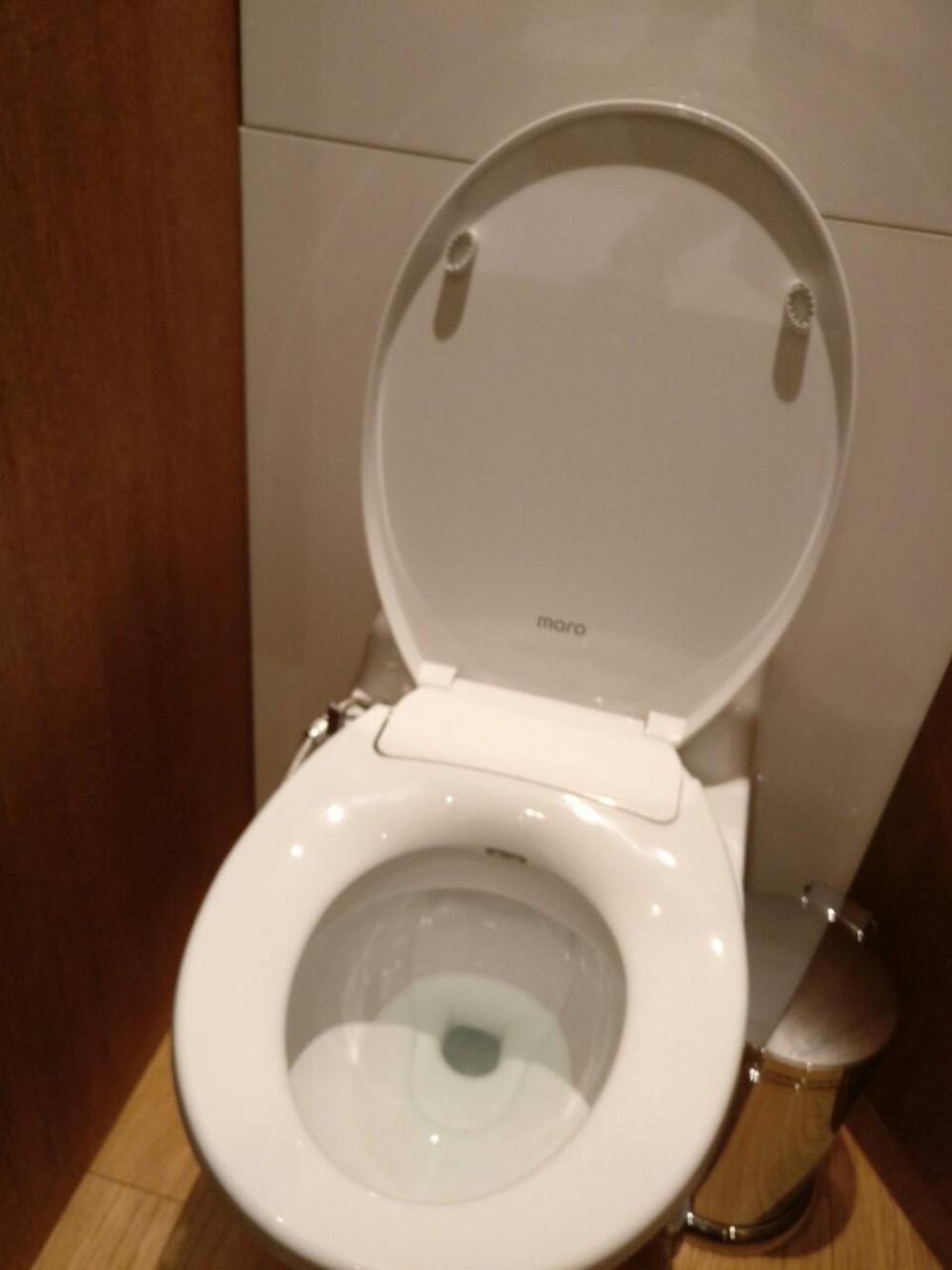 machenical cold water shower toilet united kingdom